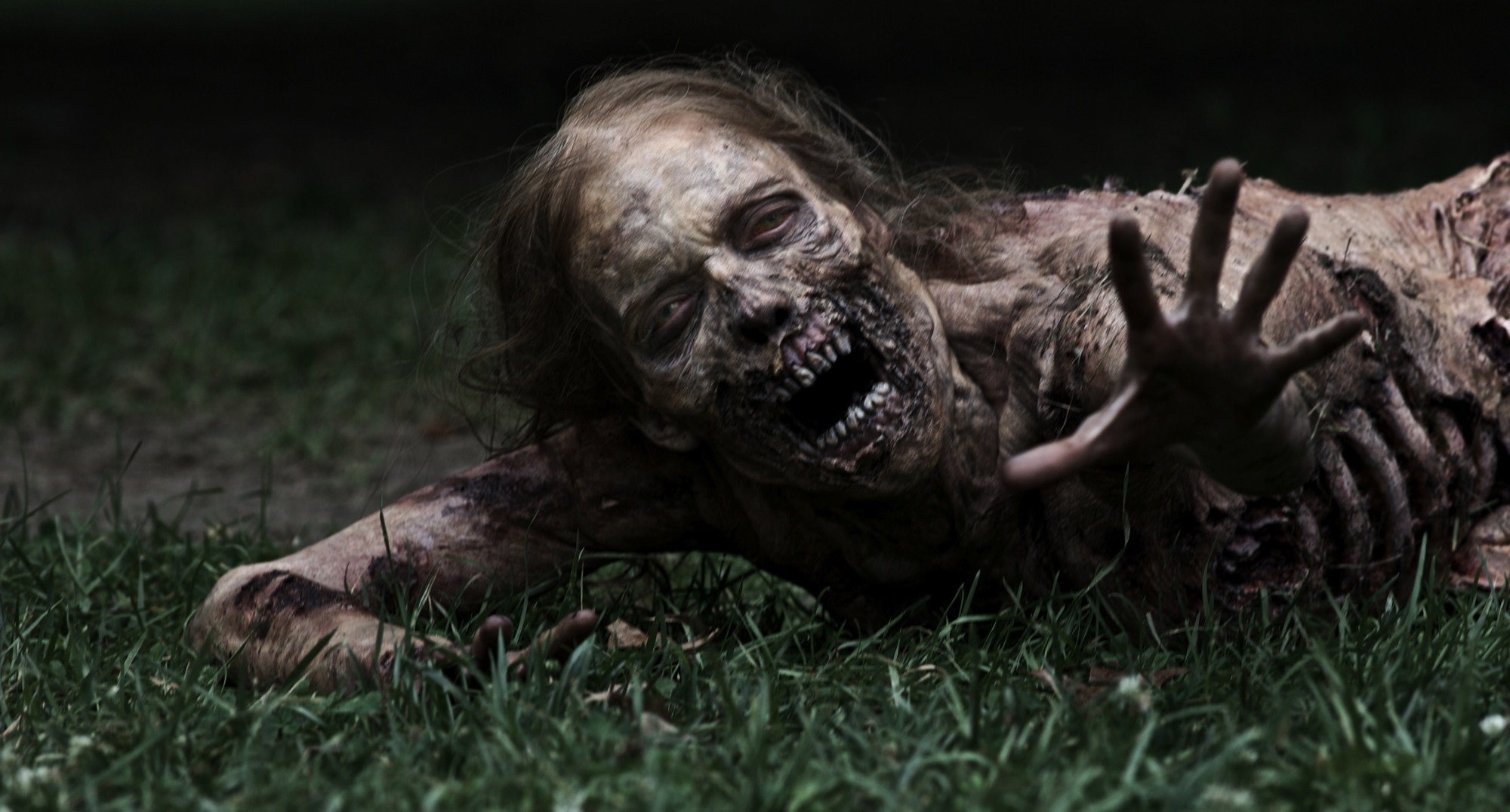[ FRENCHCORE WEEKEND - 1+2 Mars 2014 - Culemborg - NL ] The-Walking-Dead-Zombie1